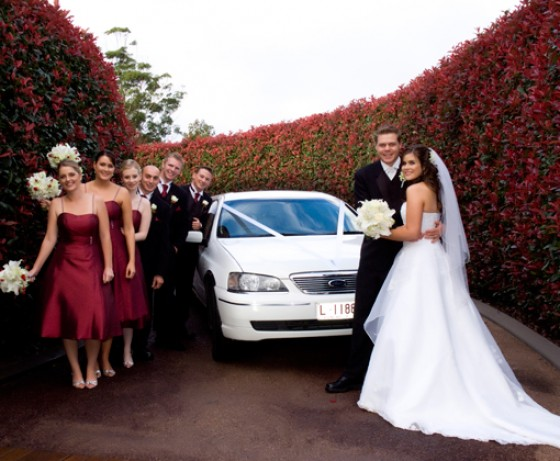 Bridal party in front of wedding car